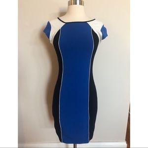 Express Form Fitting Dress Sz XS